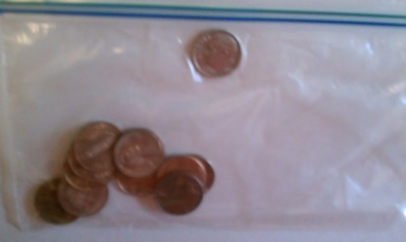 dime and ten penny bag