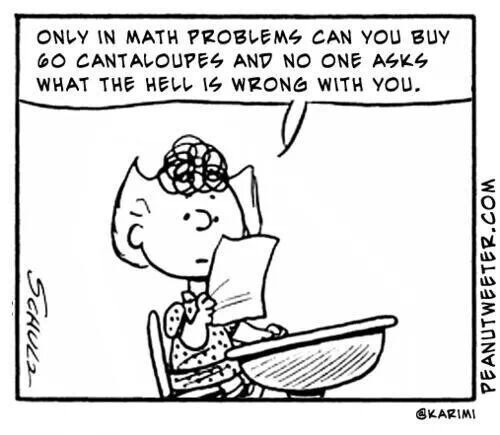 sally math problem